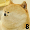 doge  play
